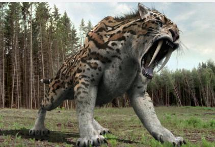 Hổ răng kiếm