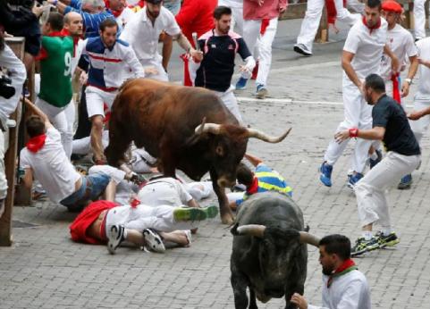 Lễ hội bò đuổi ở Tây Ban Nha